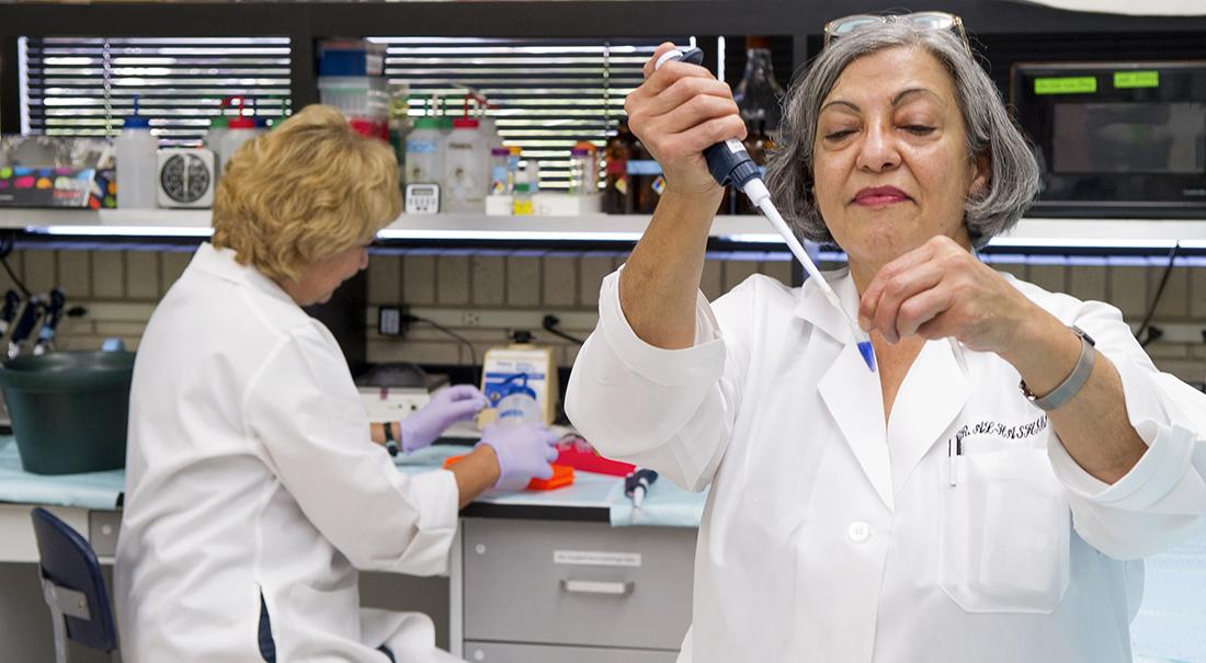Dr. Ibtisam Al-Hashimi