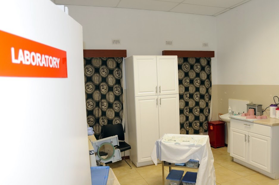 A view of the dental room at Northrise University's NUCare clinic, where dental students worked for several days.