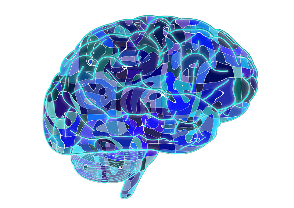 Illustration of a brain