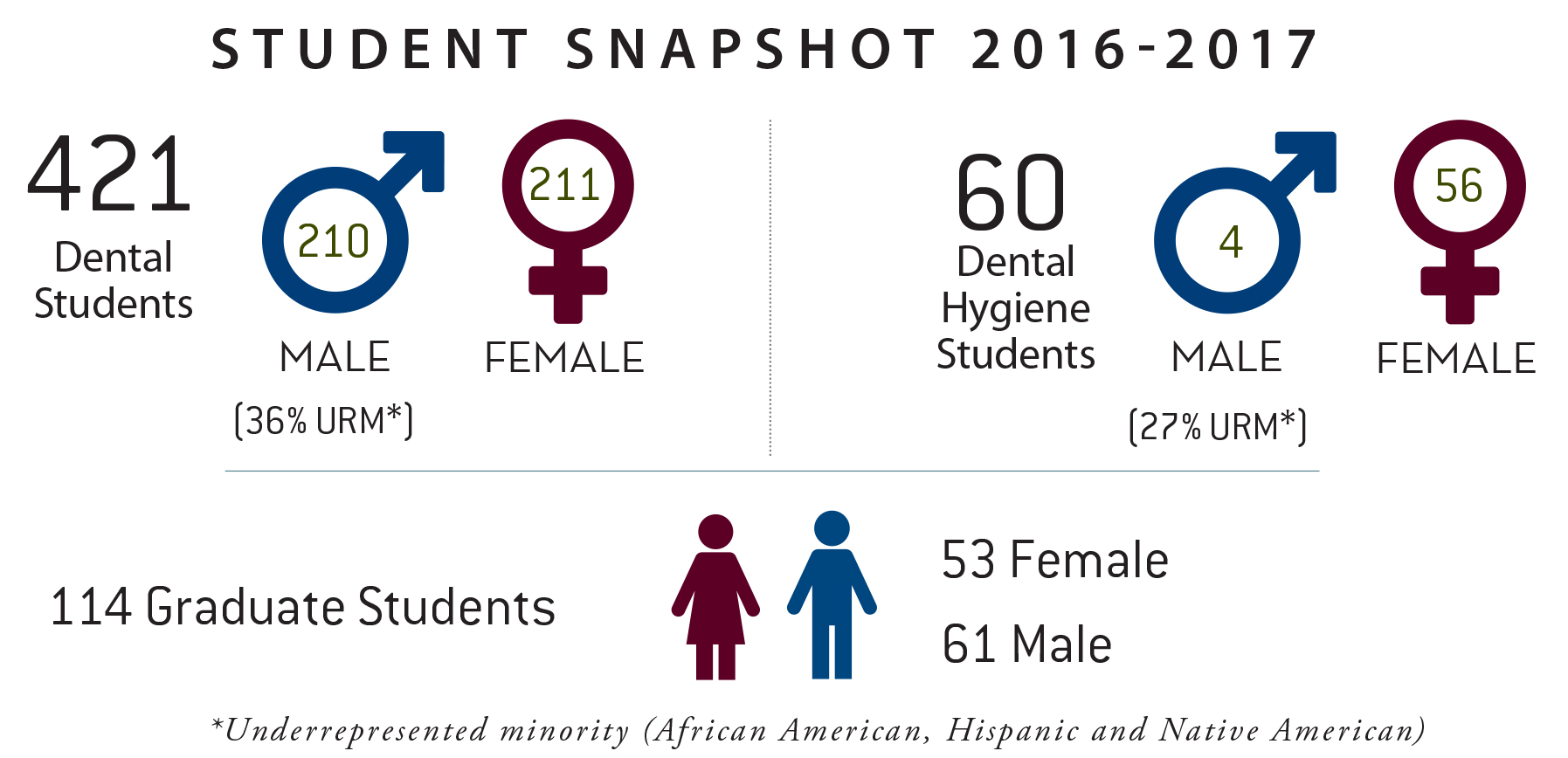 Infographic: Breakdown of students at Texas A&M College of Dentistry for 2016-2017 academic year